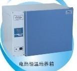 电热恒温培养箱DHP-9032/DHP-9032电热培养箱DHP-9032/工作室尺寸340*320*320mm