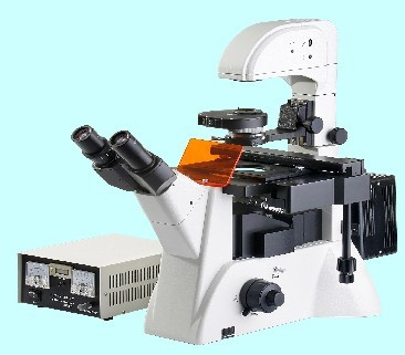 ZC- XDY-2倒置熒光顯微鏡