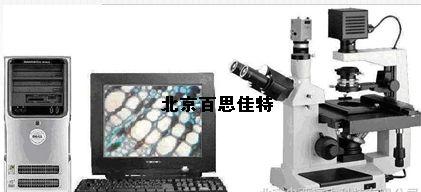 倒置顯微圖像分析系統