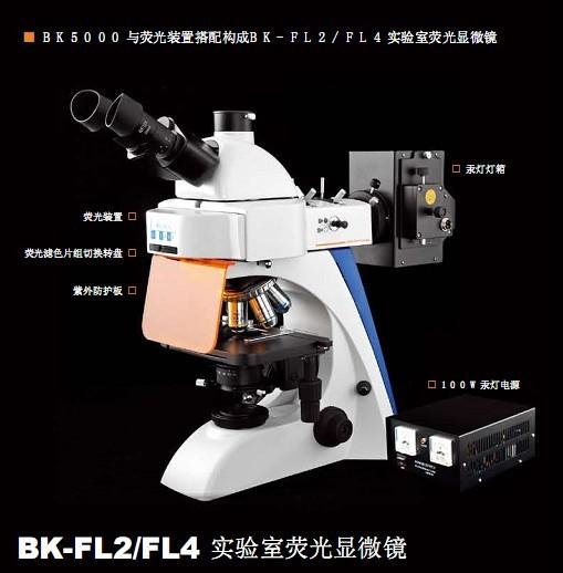 BK204熒光顯微鏡