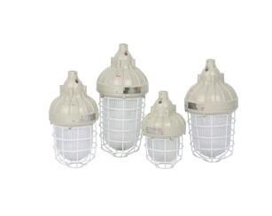 防爆燈具,防爆電器,CCd93防爆照明燈(ⅡC),防爆照明燈,防爆燈