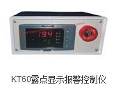 KT60露點顯示報警控制儀 壓縮空氣露點測量儀 干燥除濕露點水分測量 鋰電手套箱耐腐蝕性露點探頭