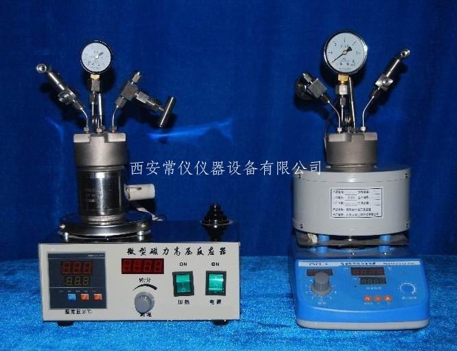 微型磁力高压反应釜 微型高压磁力反应釜 微型高压反应釜
