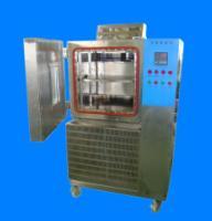 低温恒定湿热试验箱