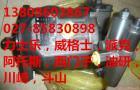 齿轮泵 0510765055